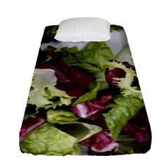 Salad Lettuce Vegetable Fitted Sheet (single Size) by Sapixe