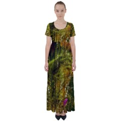 Dragonfly Dragonfly Wing Close Up High Waist Short Sleeve Maxi Dress