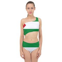 Flag Of Andalucista Youth Wing Of Andalusian Party Spliced Up Two Piece Swimsuit by abbeyz71