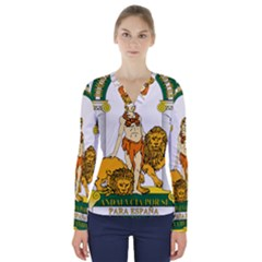 Emblem Of Andalusia V Neck Long Sleeve Top