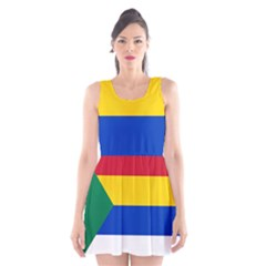 Druze Flag  Scoop Neck Skater Dress