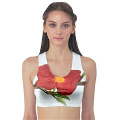 Deep Plumb Blossom Sports Bra