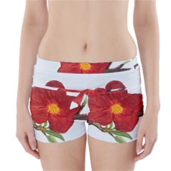 Deep Plumb Blossom Boyleg Bikini Wrap Bottoms by lwdstudio
