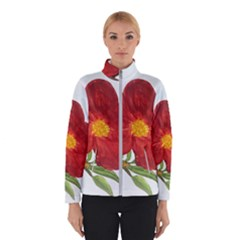 Deep Plumb Blossom Winter Jacket