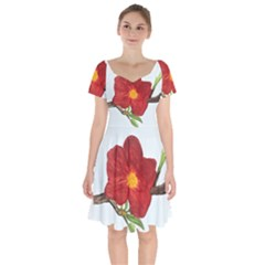 Deep Plumb Blossom Short Sleeve Bardot Dress by lwdstudio