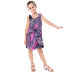 Beefsteak Plant Perilla Frutescens Kids  Sleeveless Dress