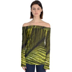 Feather Macro Bird Plumage Nature Off Shoulder Long Sleeve Top by Sapixe