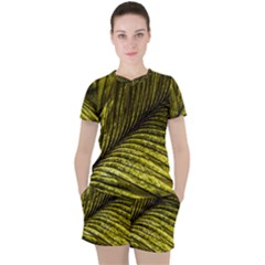 Feather Macro Bird Plumage Nature Women s Tee And Shorts Set