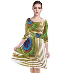 Peacock Feather Plumage Colorful Quarter Sleeve Waist Band Dress