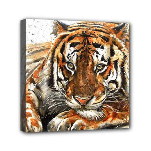 Tiger Sign Mini Canvas 6  X 6  (stretched) by kostart
