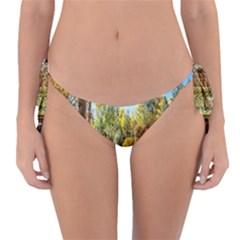 Landscape # 2 The Path Reversible Bikini Bottom