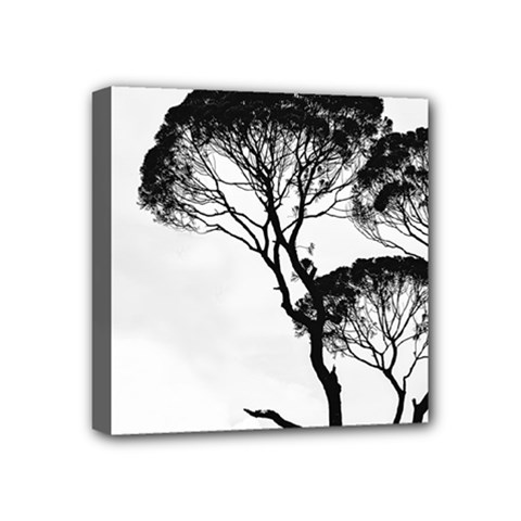 Silhouette Photo Of Trees Mini Canvas 4  X 4  (stretched)
