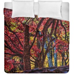 Autumn Colorful Nature Trees Duvet Cover Double Side (king Size)
