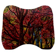Autumn Colorful Nature Trees Velour Head Support Cushion by Samandel