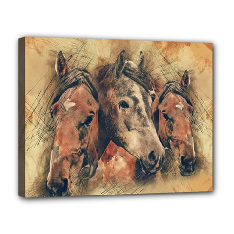 Head Horse Animal Vintage Canvas 14  X 11  (stretched)