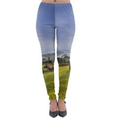 Vietnam Terraces Rice Silk Lightweight Velour Leggings
