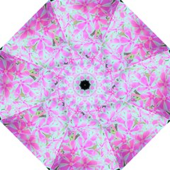 Hot Pink And White Peppermint Twist Flower Petals Folding Umbrellas by myrubiogarden