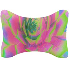 Lime Green And Pink Succulent Sedum Rosette Seat Head Rest Cushion by myrubiogarden
