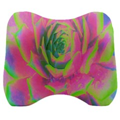 Lime Green And Pink Succulent Sedum Rosette Velour Head Support Cushion by myrubiogarden