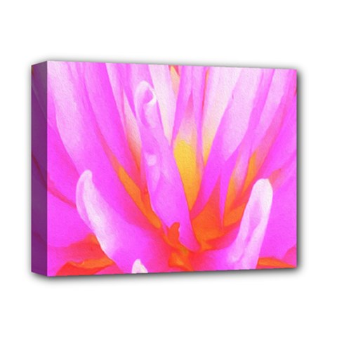 Fiery Hot Pink And Yellow Cactus Dahlia Flower Deluxe Canvas 14  X 11  (stretched) by myrubiogarden