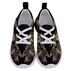 Animals Angry Male Lions Conflict Running Shoes