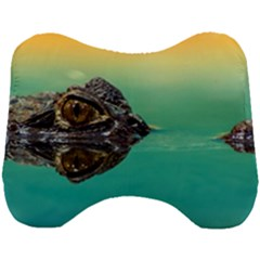 Amphibian Animal Head Support Cushion by AnjaniArt