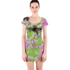 Hot Pink Succulent Sedum With Fleshy Green Leaves Short Sleeve Bodycon Dress