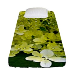 Elegant Chartreuse Green Limelight Hydrangea Macro Fitted Sheet (single Size)