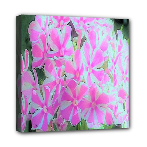 Hot Pink And White Peppermint Twist Garden Phlox Mini Canvas 8  X 8  (stretched)