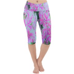 Hot Pink And White Peppermint Twist Garden Phlox Lightweight Velour Cropped Yoga Leggings by myrubiogarden