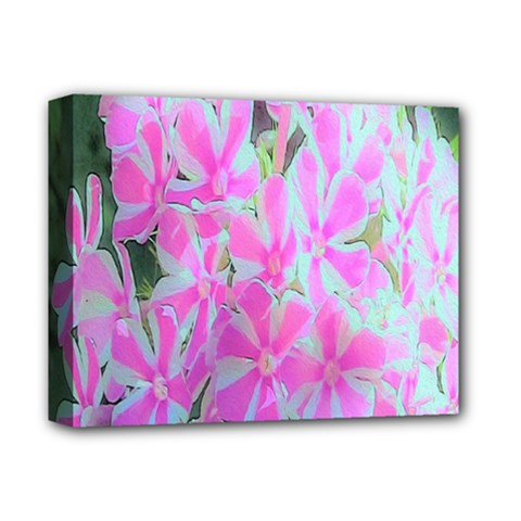 Hot Pink And White Peppermint Twist Garden Phlox Deluxe Canvas 14  X 11  (stretched)