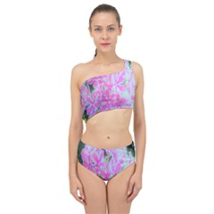 Hot Pink And White Peppermint Twist Garden Phlox Spliced Up Two Piece Swimsuit by myrubiogarden