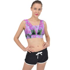 Hot Pink And White Peppermint Twist Garden Phlox V Back Sports Bra by myrubiogarden