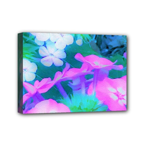 Pink, Green, Blue And White Garden Phlox Flowers Mini Canvas 7  X 5  (stretched) by myrubiogarden