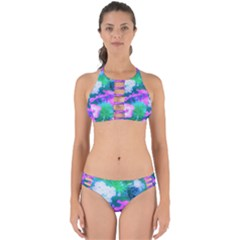Pink, Green, Blue And White Garden Phlox Flowers Perfectly Cut Out Bikini Set