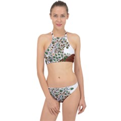 Peacock Graceful Bird Animal Racer Front Bikini Set