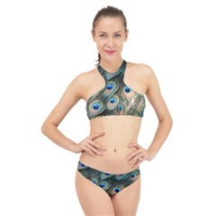 Peacock Feathers Bird Colorful High Neck Bikini Set