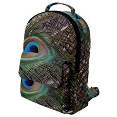 Peacock Tail Feathers Flap Pocket Backpack (small) by Wegoenart