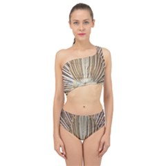 Peacock Wheel Bird Nature Spliced Up Two Piece Swimsuit