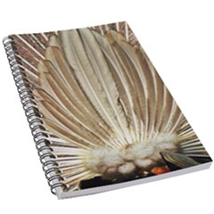 Peacock Wheel Bird Nature 5 5  X 8 5  Notebook New by Wegoenart