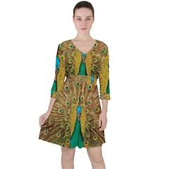 Peacock Feather Bird Peafowl Ruffle Dress