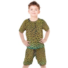 Peacock Bird Feather Color Kid s Set