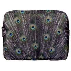 Background Peacock Feathers Make Up Pouch (large)