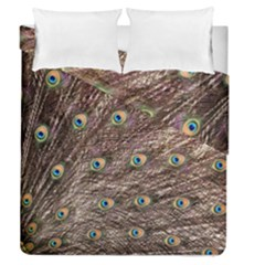 Peacock Feathers Wheel Plumage Duvet Cover Double Side (queen Size) by Wegoenart