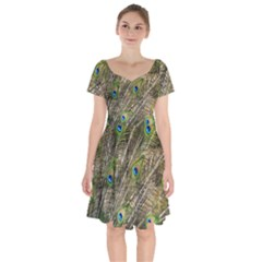 Peacock Feathers Color Plumag Short Sleeve Bardot Dress