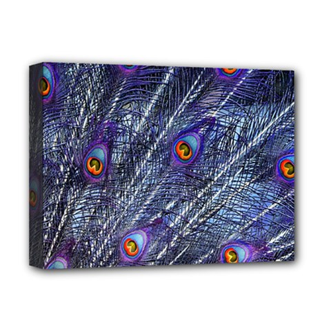 Peacock Feathers Color Plumage Deluxe Canvas 16  X 12  (stretched)