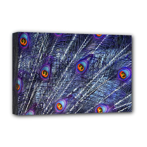 Peacock Feathers Color Plumage Deluxe Canvas 18  X 12  (stretched)