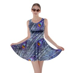 Peacock Feathers Color Plumage Skater Dress
