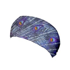 Peacock Feathers Color Plumage Yoga Headband