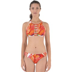 Red Tulip And Black Stripes Perfectly Cut Out Bikini Set by picsaspassion